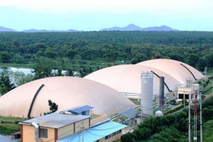 Southeast Asian Countries Shift to Biogas from Palm Oil Mill Effluent
